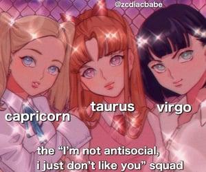 meme, taurus, and virgo image