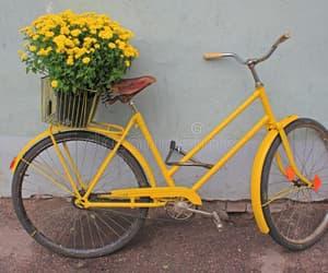 aesthetic, aesthetics, and bike image