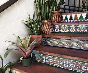 plants, home, and stairs image