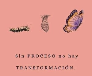 butterfly, frases, and mariposa image