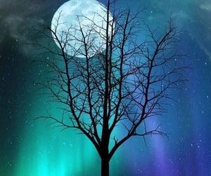 aurora borealis, moon, and night sky image