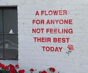 quotes, flowers, and red image