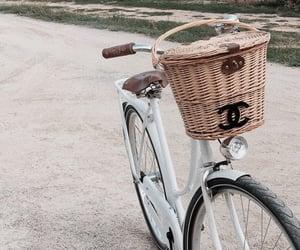bike and chanel image