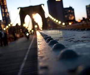 photography, bridge, and city image