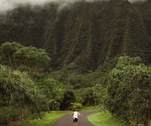hawaii and united states image