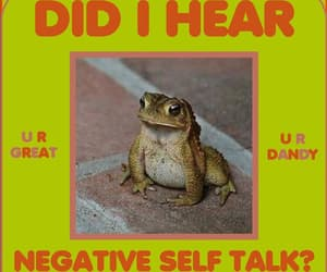 frog, positive, and negative image
