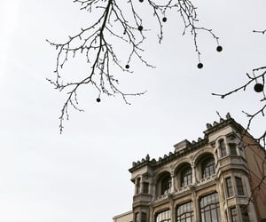 aesthetic, architecture, and belgium image