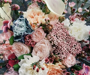 bouquet, Clove, and flowers image