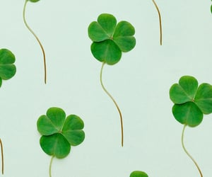 background, st patricks day, and cute image