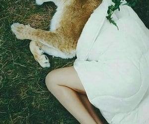animal, girls, and ﺭﻣﺰﻳﺎﺕ image
