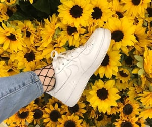 aesthetic, flowers, and nike image