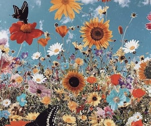 butterfly, flowers, and background image