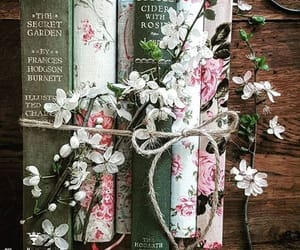 aesthetic, vintage, and books image