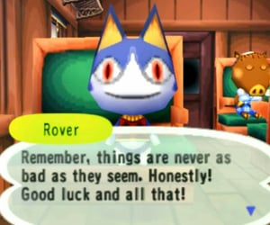 animal crossing, positive, and rover image