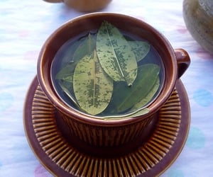 tea, drink, and water image