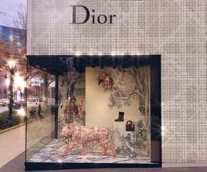dior and sparkle image
