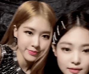 gif, rose, and park chaeyoung image