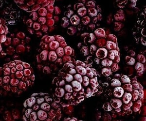 fruit, raspberry, and berries image