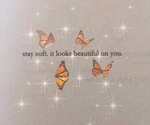 aesthetic, butterfly, and quotes image