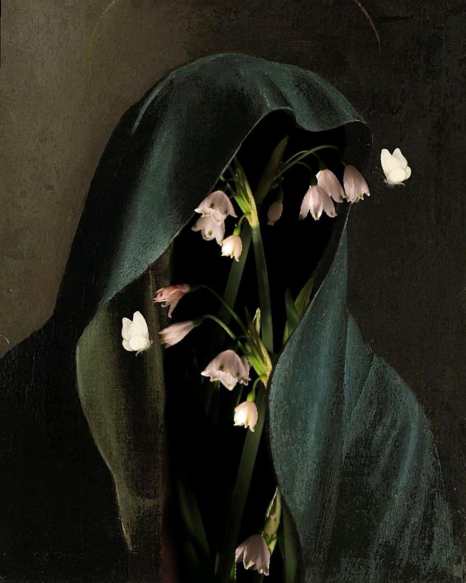 Imagem de botany, cloak, and death