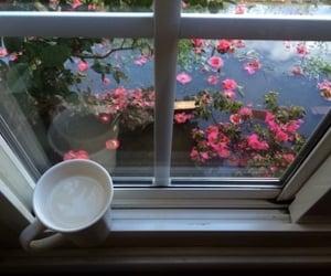 flowers, coffee, and window image