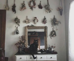 witch, cat, and mirror image