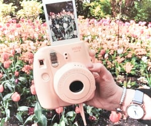 polaroid, spring, and aesthetic image