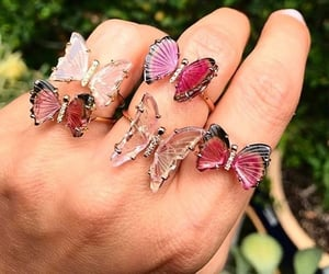 butterfly, rings, and pink image