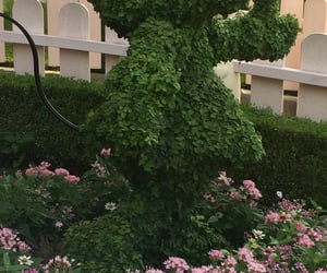 aesthetic, hedge, and minnie mouse image