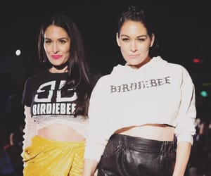 the bella twins, nikki bella, and brie bells image