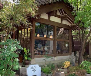 cafe, green, and korea image