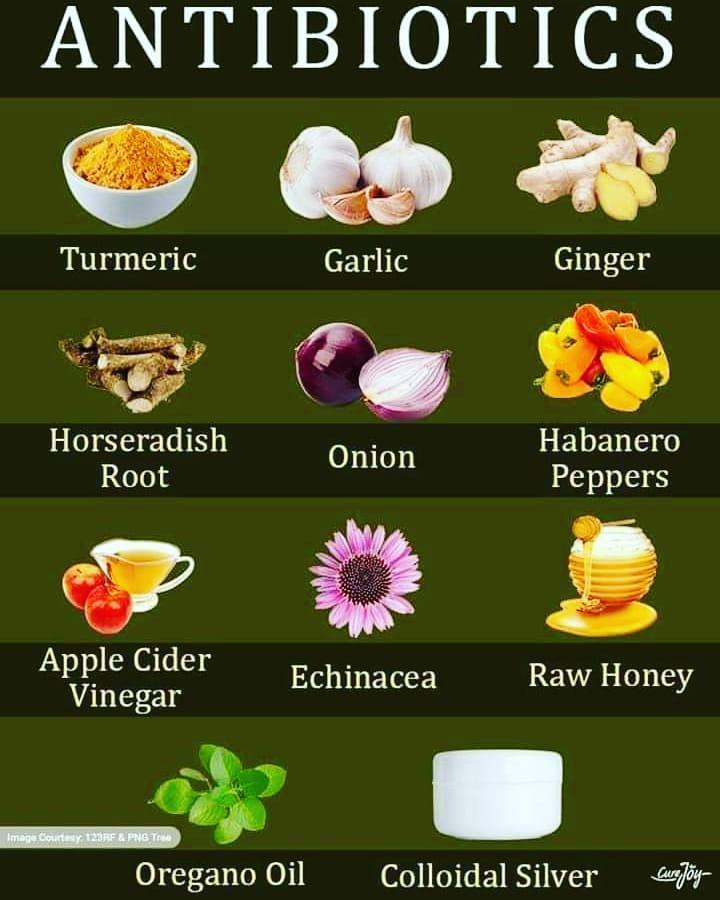 eating, food, and garlic image