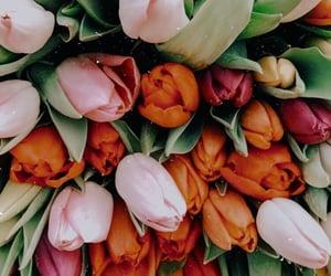 beautiful, flowers, and girls image