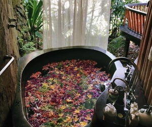 flowers, bathroom, and relax image