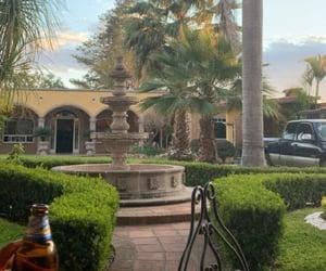 Hacienda, mexico, and palm image
