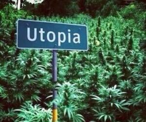 utopia, weed, and marijuana image