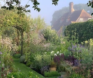 aesthetic, flowers, and garden image