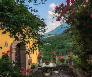 flowers, nature, and italy image
