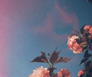 amor, azul, and beautiful image