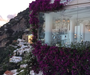 flowers, view, and aesthetic image