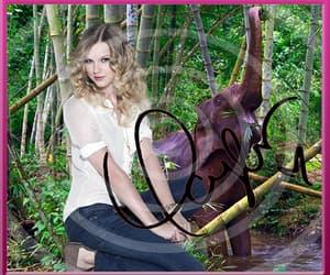 foto, jungle, and cadeau image