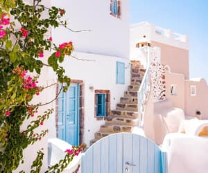 Greece, travel, and flowers image