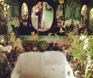 plants, bathroom, and bath image