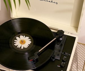 music, aesthetic, and daisy image