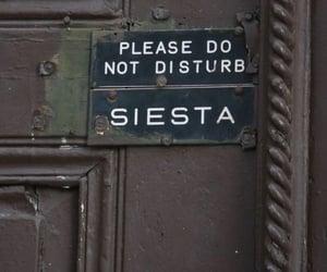 siesta, quotes, and door image