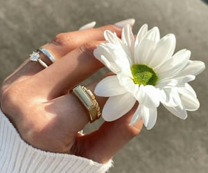 flowers, nails, and accessories image
