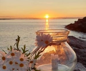 beautiful, candle, and daisy image