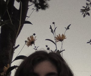 aesthetic, flowers, and loneliness image