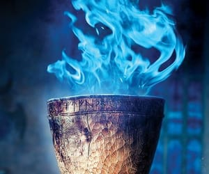 goblet of fire and harry potter image