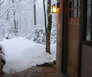 entrance, snow, and forest image